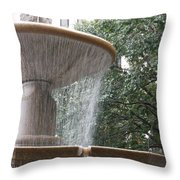 Fountain Of Yewts Throw Pillow