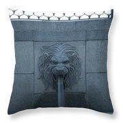 Fountain Seat Throw Pillow