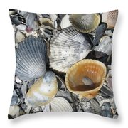 Four Beautiful Shells Throw Pillow