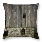 Four Broken Windows Throw Pillow by Joan Carroll