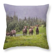 Four Brothers Throw Pillow