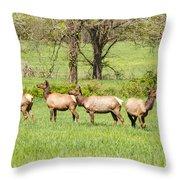 Four Elk Throw Pillow