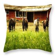 Four Horses Throw Pillow