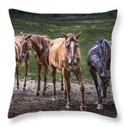 Four Horses E137 Throw Pillow