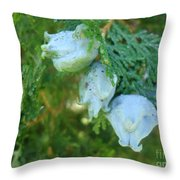 Forest Foursome Throw Pillow