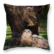 Four Owl Chicks In A Dark Forest Throw Pillow