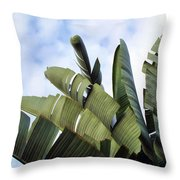 Four Seasons 7 Throw Pillow