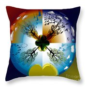Four Seasons Roundel Throw Pillow