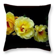 Four Stages Of Bloom Of A Yellow Rose Throw Pillow