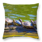 Four Turtles Throw Pillow