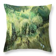 Fourth Puzzle Of Biotop Throw Pillow