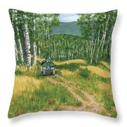 Fourwheeling In Alaska Throw Pillow