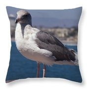Waterfowl Model Throw Pillow