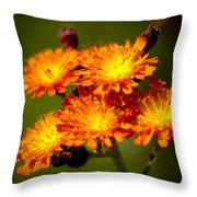 Fox-and-cubs Throw Pillow