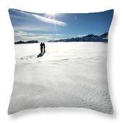 Fox Glacier Throw Pillow