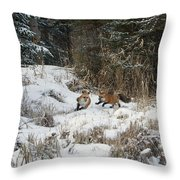 Fox Hollow Throw Pillow