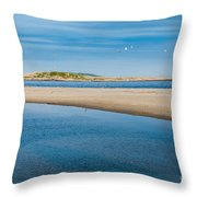 Fox Island Throw Pillow by Susan Cole Kelly
