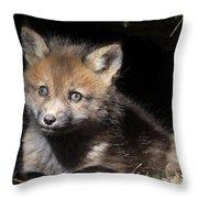 Fox Kit In Den Throw Pillow