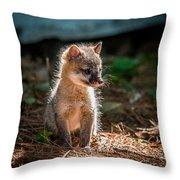 Fox Kit Throw Pillow