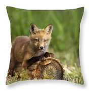 Fox Pup In The Morning Light Throw Pillow