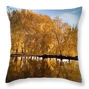 Fox River-jp2418 Throw Pillow