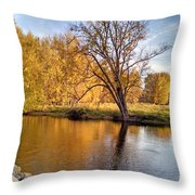 Fox River-jp2419 Throw Pillow