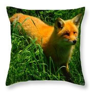 Fox Trot Throw Pillow