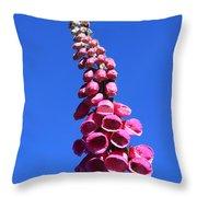 Foxglove  Throw Pillow by Aidan Moran