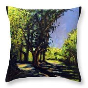 Foxgrapes And A Sandy Road Throw Pillow