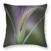 Foxtail Barley Throw Pillow by Priska Wettstein