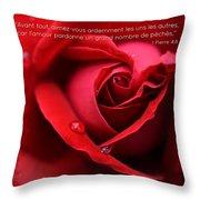 Fr I Peter 4 8 Throw Pillow