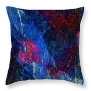 Fracture Section Xv Throw Pillow