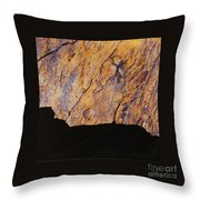 Fracture V Throw Pillow