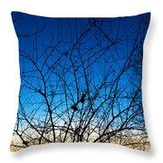 Fractured Sunset Throw Pillow