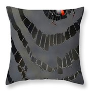 Fractured Web Throw Pillow