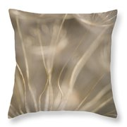 Fragile Throw Pillow