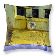 Fragile Dreams Throw Pillow