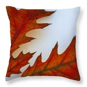 Fragile Transformation Throw Pillow