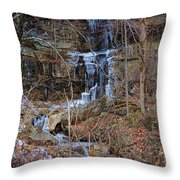 Fragility Of Ice Throw Pillow