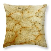 Fragments Of Frame Throw Pillow