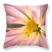 Frail Beauty Throw Pillow