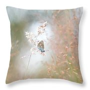 Frame Of Grasses Throw Pillow