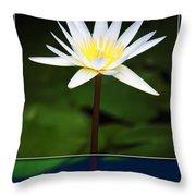 Framed Serenity Throw Pillow