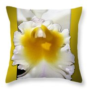 Framed White Orchid Throw Pillow