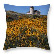 Framed With Gold Throw Pillow