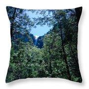 Framing A Waterfall Throw Pillow