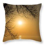 Framing The Golden Sun Throw Pillow