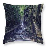 Franconia Notch Throw Pillow