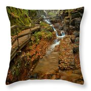 Franconia Notch Lush Greens And Rushing Waters Throw Pillow