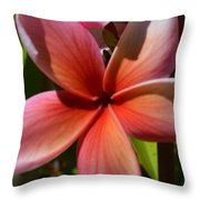 Frangipani . 1.1 Throw Pillow